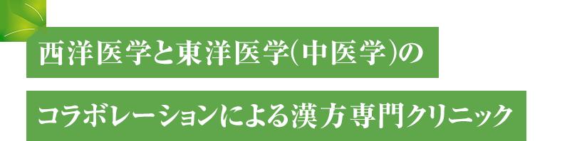 千代田漢方内科クリニック